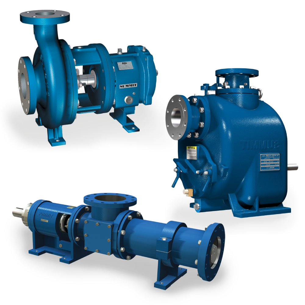 Pumps, 2196, SN, SPPC,