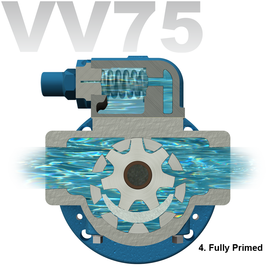 VV75_6