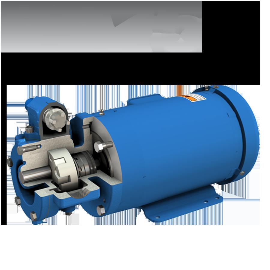 VV75_02
